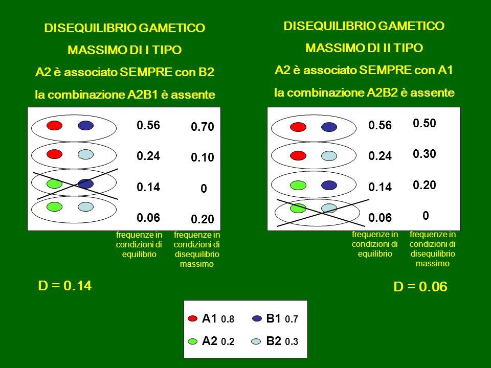 DISEQUILIBRIO GAMETICO MASSIMO DI I TIPO A2 è associato SEMPRE con B2 la combinazione A2B1 è assente DISEQUILIBRIO GAMETICO MASSIMO DI II TIPO A2 è as