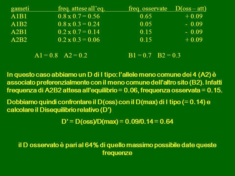 In questo caso abbiamo un D di I tipo: lallele meno comune dei 4 (A2) è associato preferenzialmente con il meno comune dellaltro sito (B2).