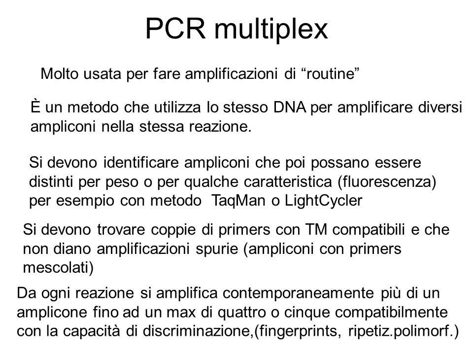 PCR multiplex Molto usata per fare amplificazioni di routine È un metodo che utilizza lo stesso DNA per amplificare diversi ampliconi nella stessa rea