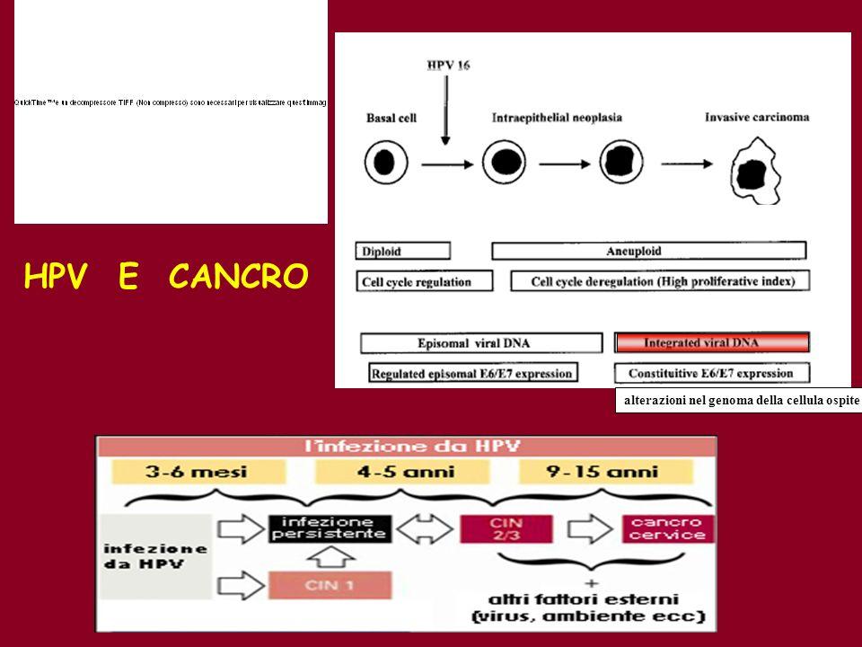 alterazioni nel genoma della cellula ospite HPV E CANCRO