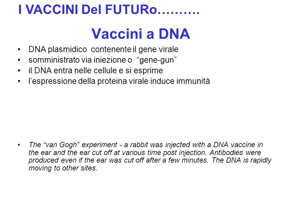 Vaccini a DNA DNA plasmidico contenente il gene virale somministrato via iniezione o gene-gun il DNA entra nelle cellule e si esprime lespressione del