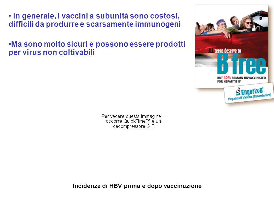 Incidenza di HBV prima e dopo vaccinazione In generale, i vaccini a subunità sono costosi, difficili da produrre e scarsamente immunogeni Ma sono molt