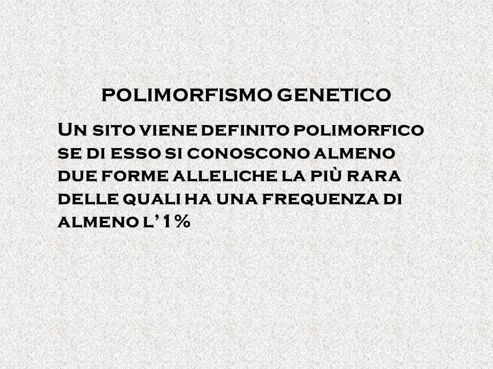 POLIMORFISMO GENETICO Un sito viene definito polimorfico se di esso si conoscono almeno due forme alleliche la più rara delle quali ha una frequenza d