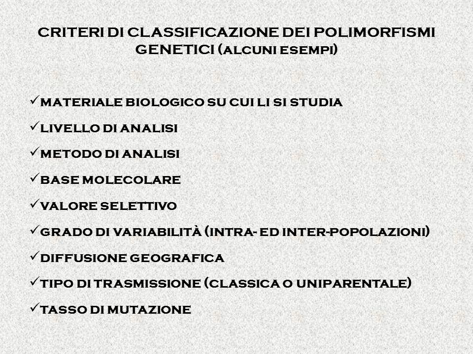 CRITERI DI CLASSIFICAZIONE DEI POLIMORFISMI GENETICI (alcuni esempi) materiale biologico su cui li si studia livello di analisi metodo di analisi base