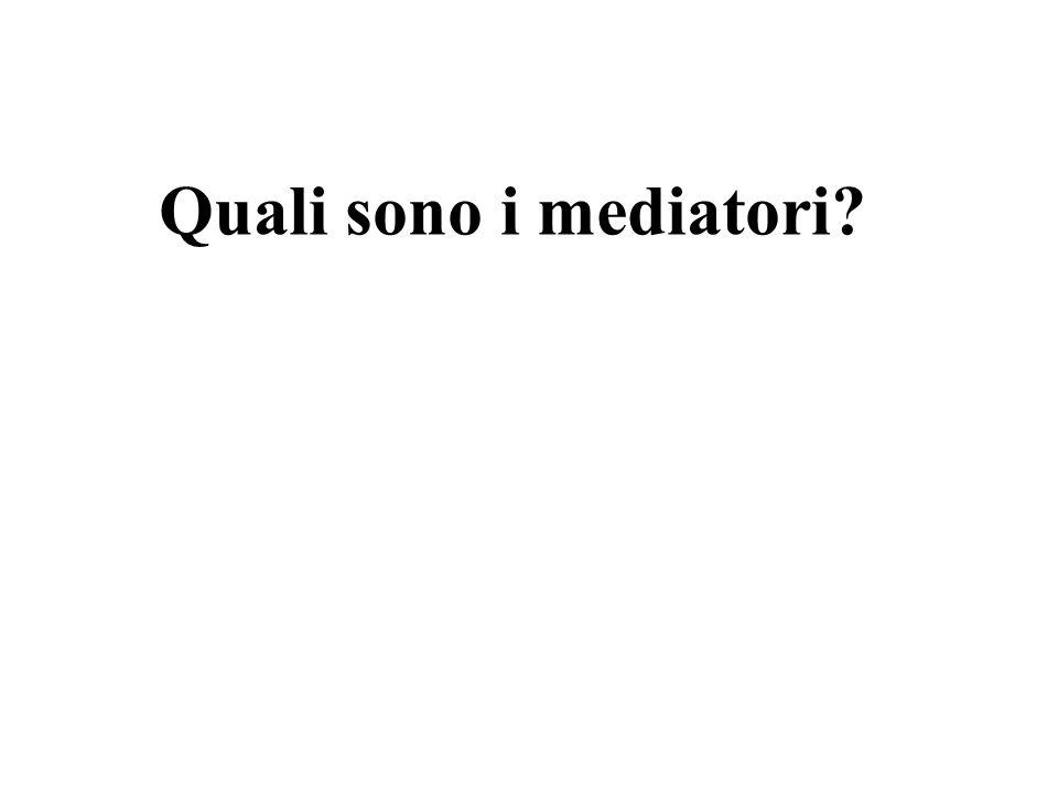 Quali sono i mediatori?