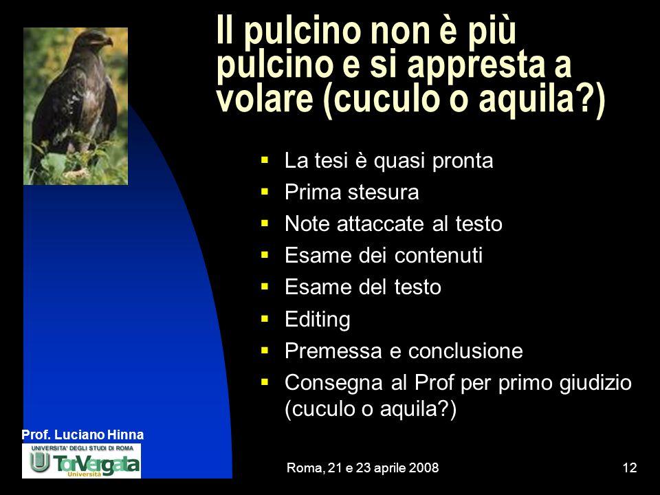 Prof. Luciano Hinna Roma, 21 e 23 aprile 200812 Il pulcino non è più pulcino e si appresta a volare (cuculo o aquila?) La tesi è quasi pronta Prima st
