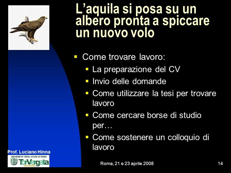 Prof. Luciano Hinna Roma, 21 e 23 aprile 200814 Laquila si posa su un albero pronta a spiccare un nuovo volo Come trovare lavoro: La preparazione del