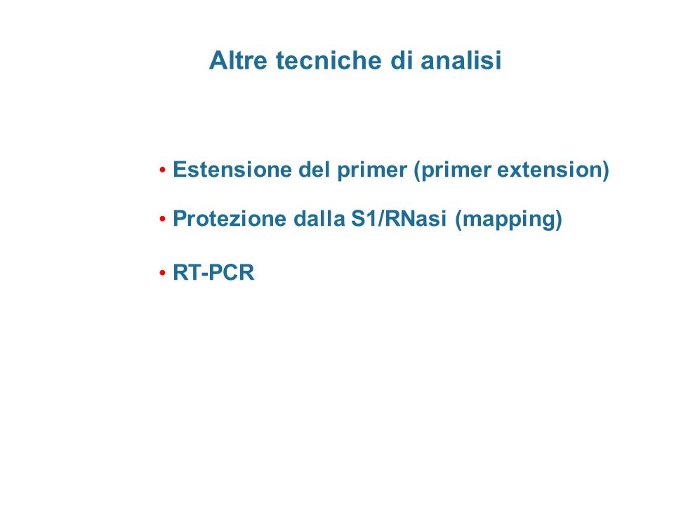 Altre tecniche di analisi Estensione del primer (primer extension) Protezione dalla S1/RNasi (mapping) RT-PCR