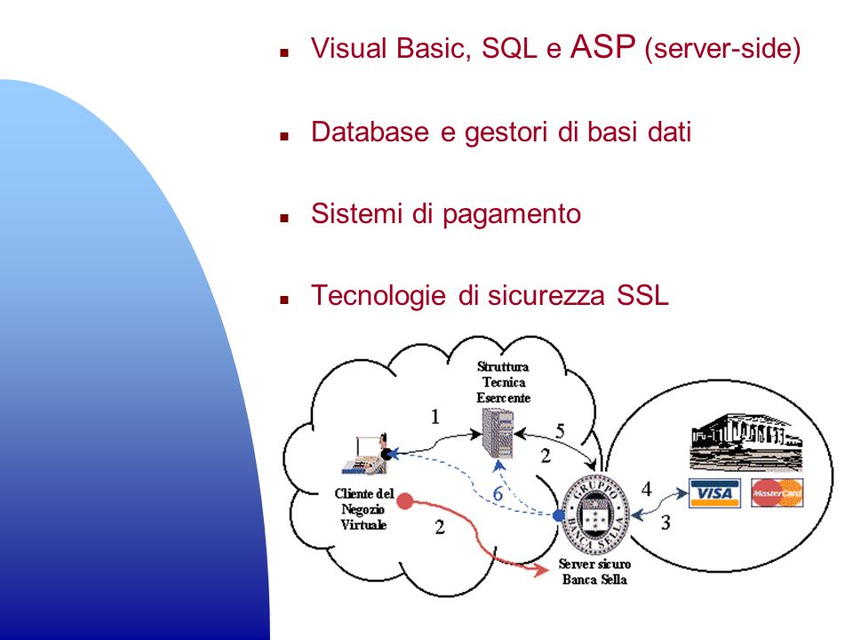 n Visual Basic, SQL e ASP (server-side) n Database e gestori di basi dati n Sistemi di pagamento n Tecnologie di sicurezza SSL