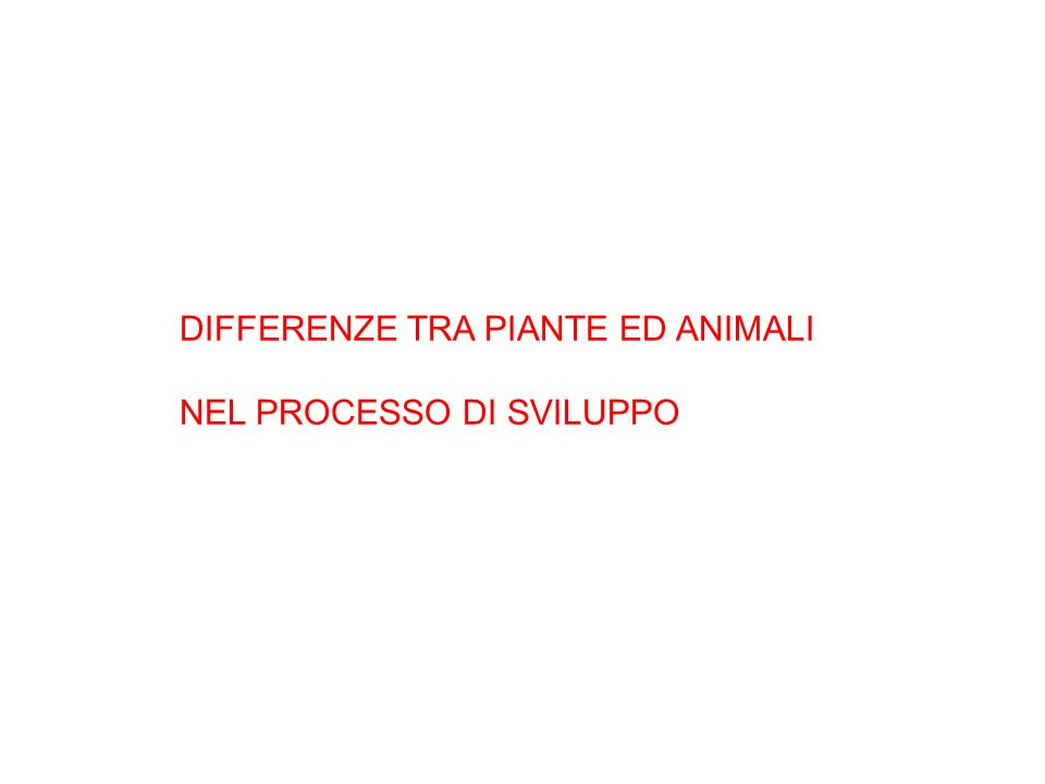 DIFFERENZE TRA PIANTE ED ANIMALI NEL PROCESSO DI SVILUPPO
