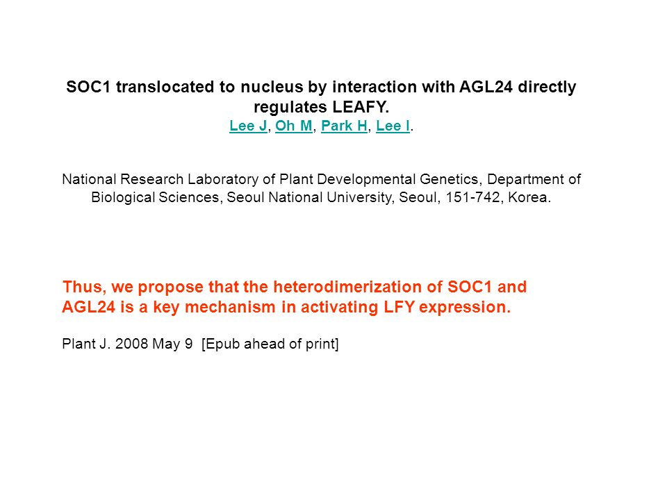 SOC1 translocated to nucleus by interaction with AGL24 directly regulates LEAFY. Lee JLee J, Oh M, Park H, Lee I.Oh MPark HLee I National Research Lab