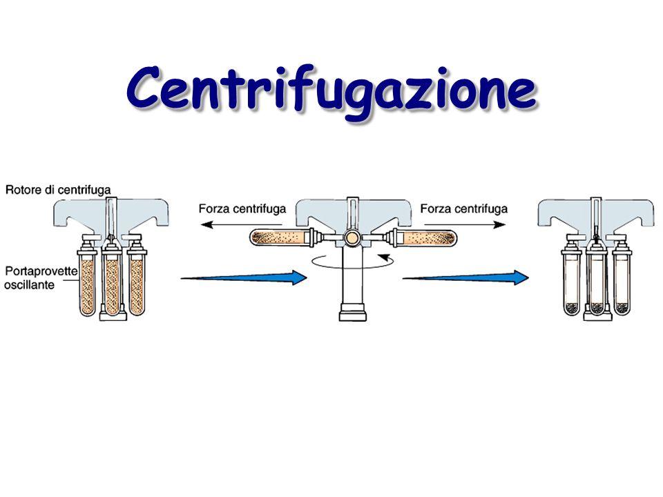 CentrifugazioneCentrifugazione