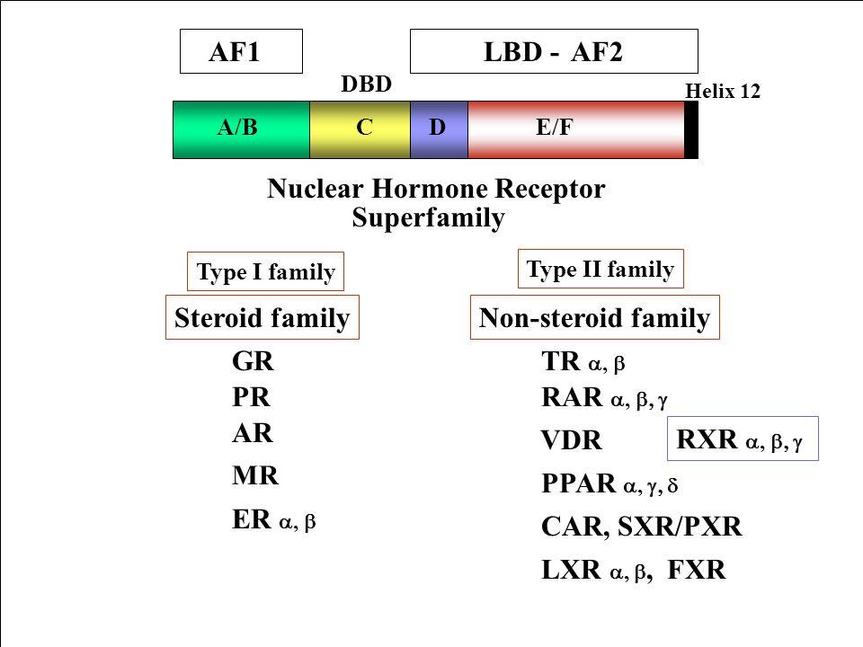 A/BCDE/F Nuclear Hormone Receptor Superfamily Steroid familyNon-steroid family ER, GR TR, RAR, PPAR, VDR RXR, PR AR DBD Type I family Type II family H