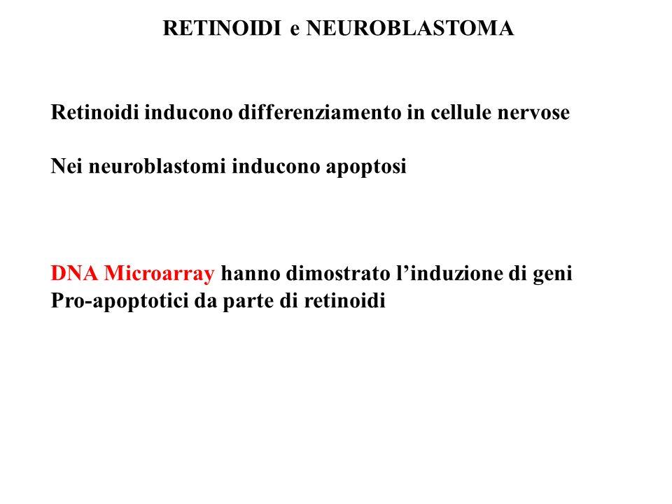 RETINOIDI e NEUROBLASTOMA Retinoidi inducono differenziamento in cellule nervose Nei neuroblastomi inducono apoptosi DNA Microarray hanno dimostrato l
