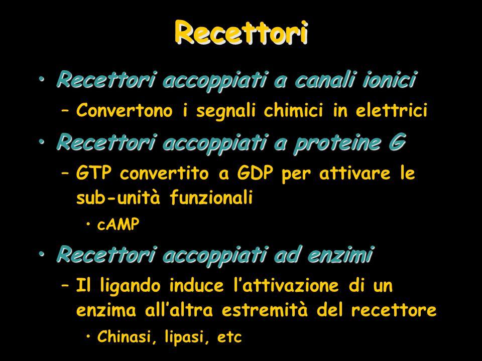 Recettori Recettori accoppiati a canali ioniciRecettori accoppiati a canali ionici –Convertono i segnali chimici in elettrici Recettori accoppiati a p