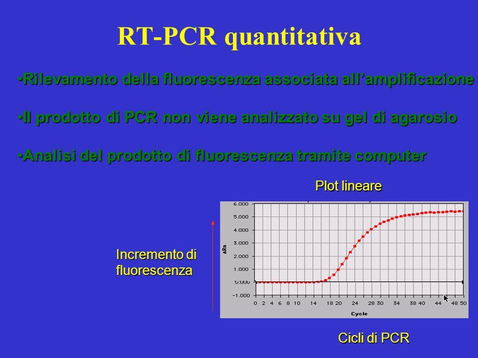 RT-PCR quantitativa Plot lineare Incremento di fluorescenza Cicli di PCR Rilevamento della fluorescenza associata allamplificazioneRilevamento della f