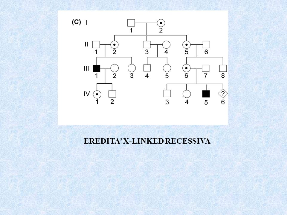 EREDITA X-LINKED RECESSIVA
