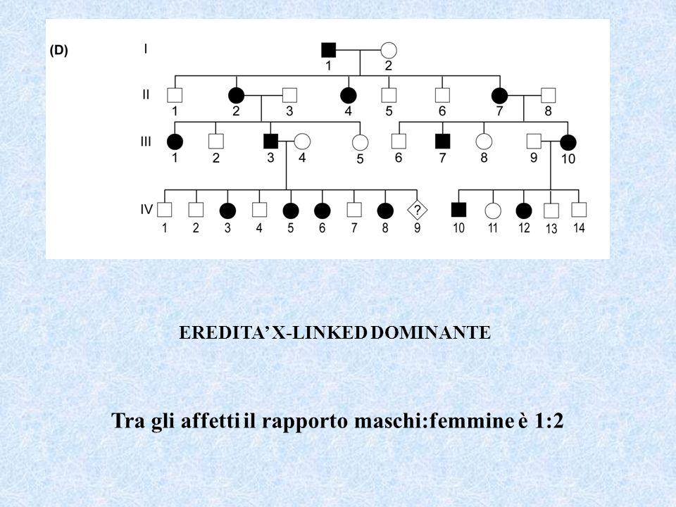 EREDITA X-LINKED DOMINANTE Tra gli affetti il rapporto maschi:femmine è 1:2