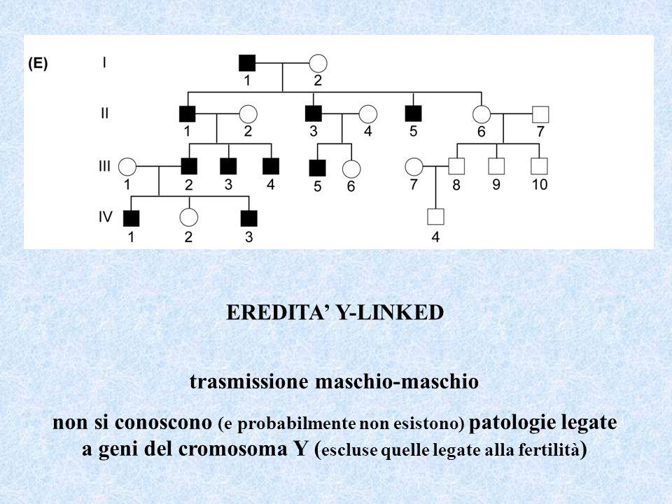EREDITA Y-LINKED trasmissione maschio-maschio non si conoscono (e probabilmente non esistono) patologie legate a geni del cromosoma Y ( escluse quelle legate alla fertilità )