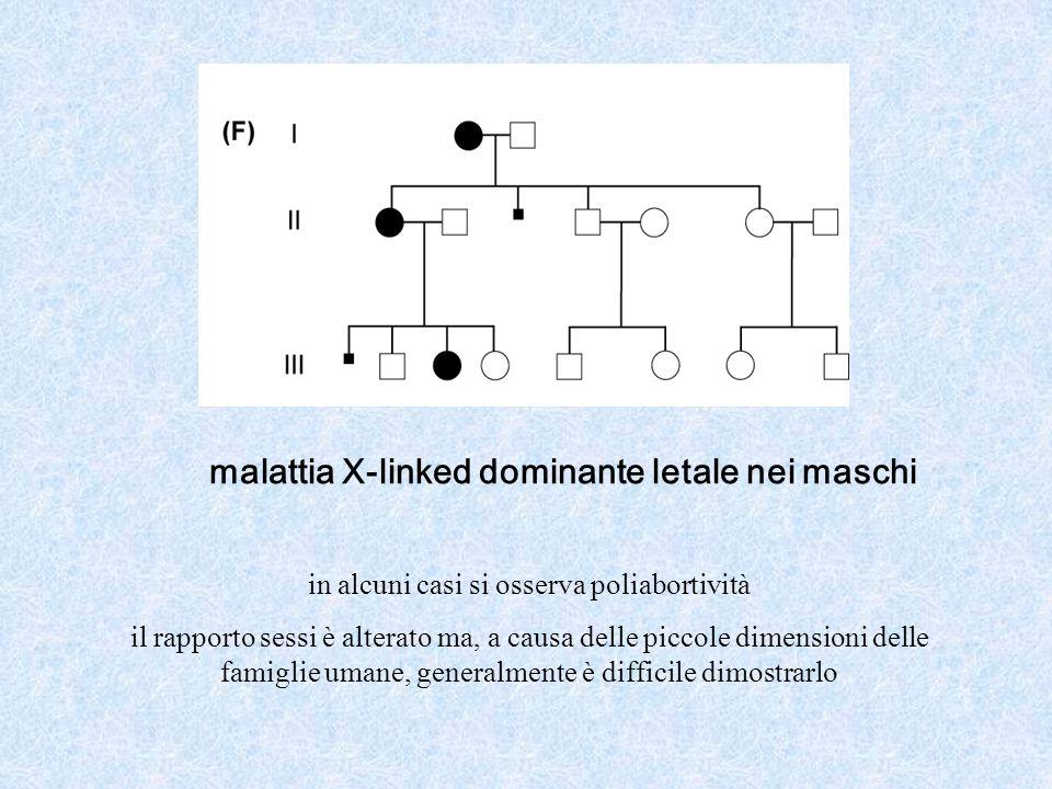 malattia X-linked dominante letale nei maschi in alcuni casi si osserva poliabortività il rapporto sessi è alterato ma, a causa delle piccole dimensioni delle famiglie umane, generalmente è difficile dimostrarlo