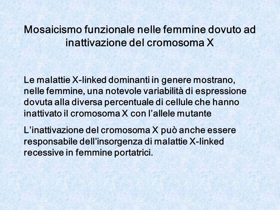 Mosaicismo funzionale nelle femmine dovuto ad inattivazione del cromosoma X Le malattie X-linked dominanti in genere mostrano, nelle femmine, una notevole variabilità di espressione dovuta alla diversa percentuale di cellule che hanno inattivato il cromosoma X con lallele mutante Linattivazione del cromosoma X può anche essere responsabile dellinsorgenza di malattie X-linked recessive in femmine portatrici.