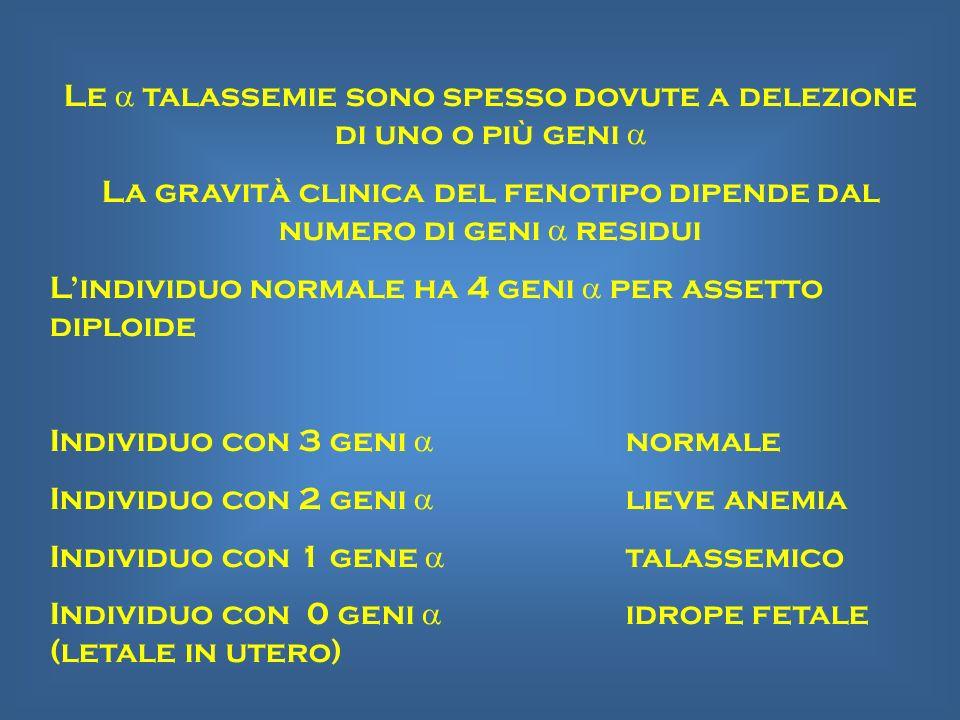 Le talassemie sono spesso dovute a delezione di uno o più geni La gravità clinica del fenotipo dipende dal numero di geni residui Lindividuo normale h