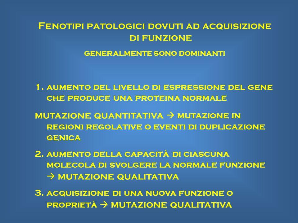 Fenotipi patologici dovuti ad acquisizione di funzione generalmente sono dominanti 1.aumento del livello di espressione del gene che produce una prote