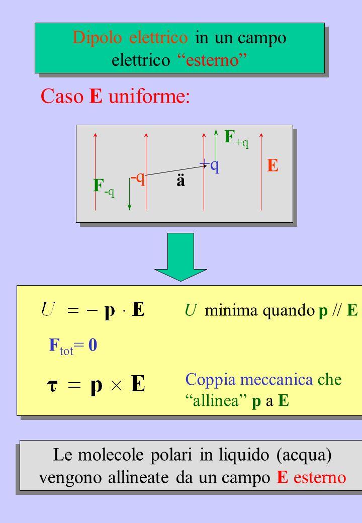 E +q -q ä F +q F -q Caso E uniforme: Le molecole polari in liquido (acqua) vengono allineate da un campo E esterno Dipolo elettrico in un campo elettr