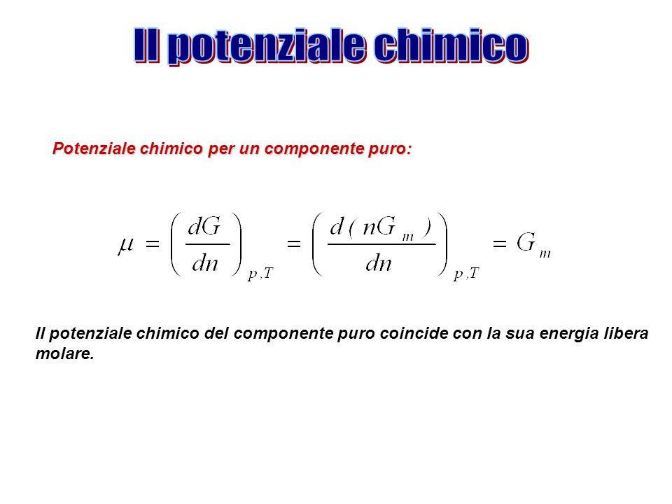 Il potenziale chimico del componente puro coincide con la sua energia libera molare. Potenziale chimico per un componente puro: