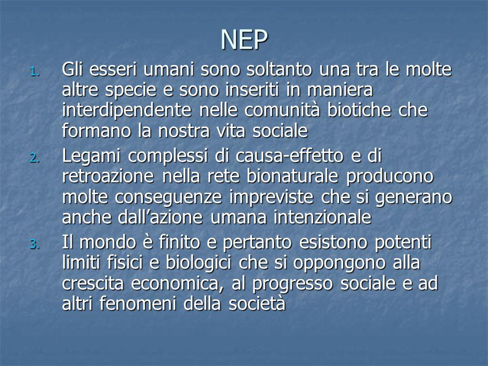 NEP 1.