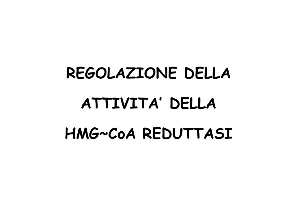 REGOLAZIONE DELLA ATTIVITA DELLA HMG~CoA REDUTTASI