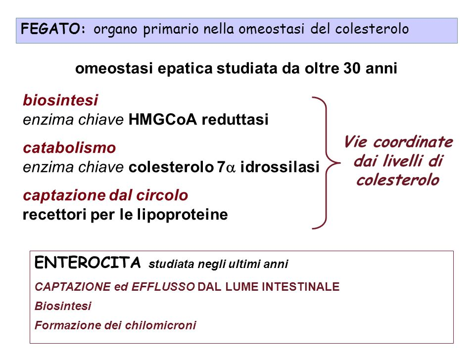 In elegant and systematic studies you have discovered a physiological mechanism of great importance: the way in which mammalian cells strive to establish an equilibrium between their own synthesis of cholesterol and the cholesterol they obtain from the circulating blood influenced by diet.