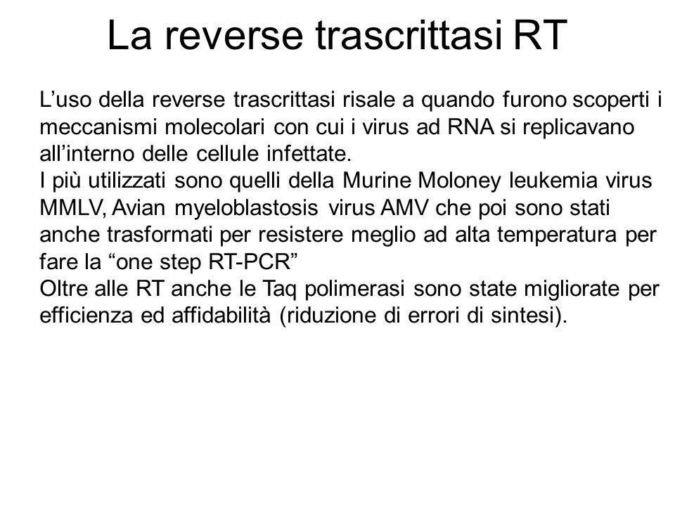 La reverse trascrittasi RT Luso della reverse trascrittasi risale a quando furono scoperti i meccanismi molecolari con cui i virus ad RNA si replicava