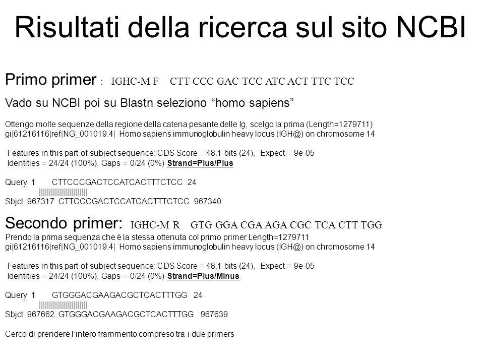 Risultati della ricerca sul sito NCBI Primo primer : IGHC-M F CTT CCC GAC TCC ATC ACT TTC TCC Vado su NCBI poi su Blastn seleziono homo sapiens Otteng