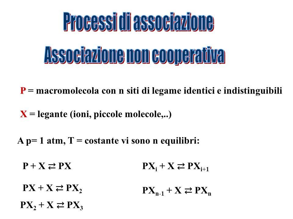 P P = macromolecola con n siti di legame identici e indistinguibili X X = legante (ioni, piccole molecole,..) A p= 1 atm, T = costante vi sono n equil