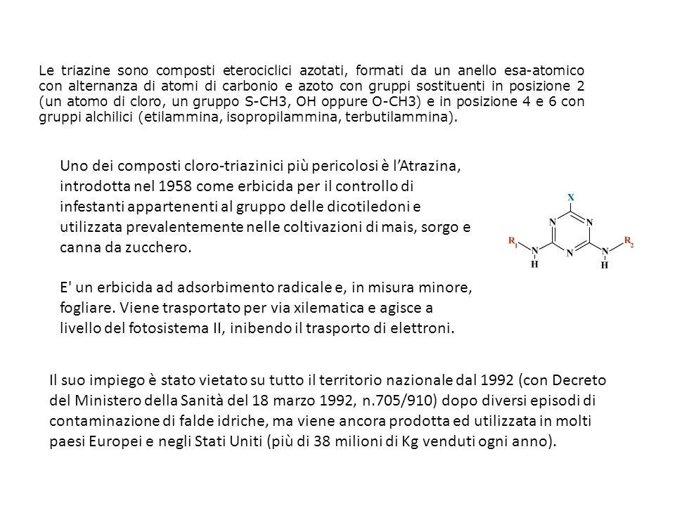 Le triazine sono composti eterociclici azotati, formati da un anello esa-atomico con alternanza di atomi di carbonio e azoto con gruppi sostituenti in