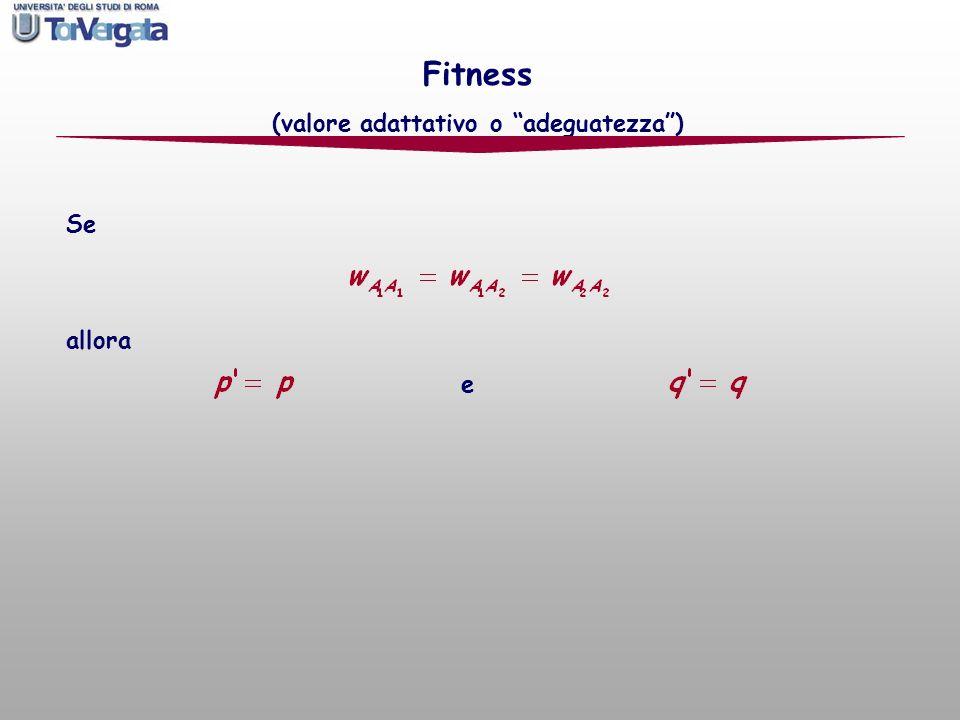 Se allora e Fitness (valore adattativo o adeguatezza)