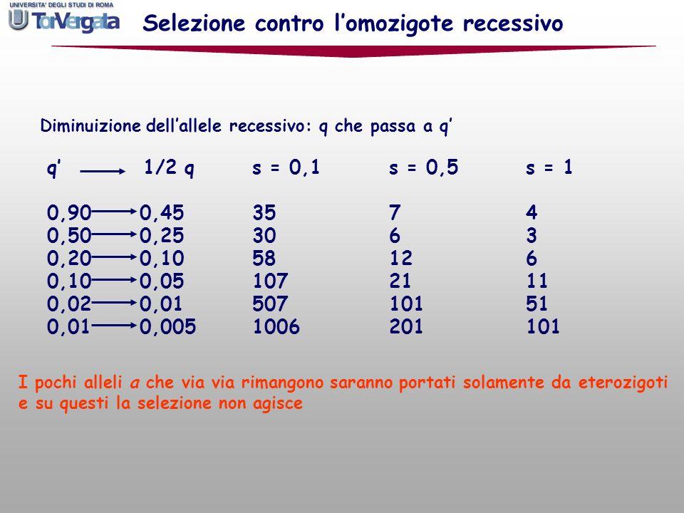 q 1/2 qs = 0,1s = 0,5s = 1 0,90 0,453574 0,50 0,253063 0,20 0,1058126 0,10 0,051072111 0,02 0,0150710151 0,01 0,0051006201101 I pochi alleli a che via