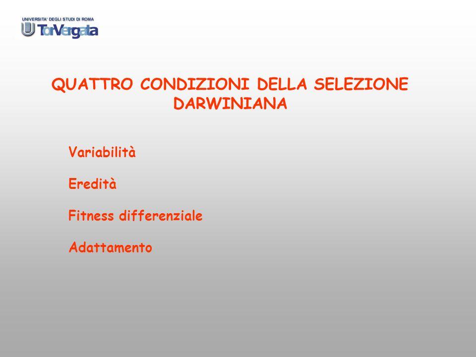 QUATTRO CONDIZIONI DELLA SELEZIONE DARWINIANA Variabilità Eredità Fitness differenziale Adattamento