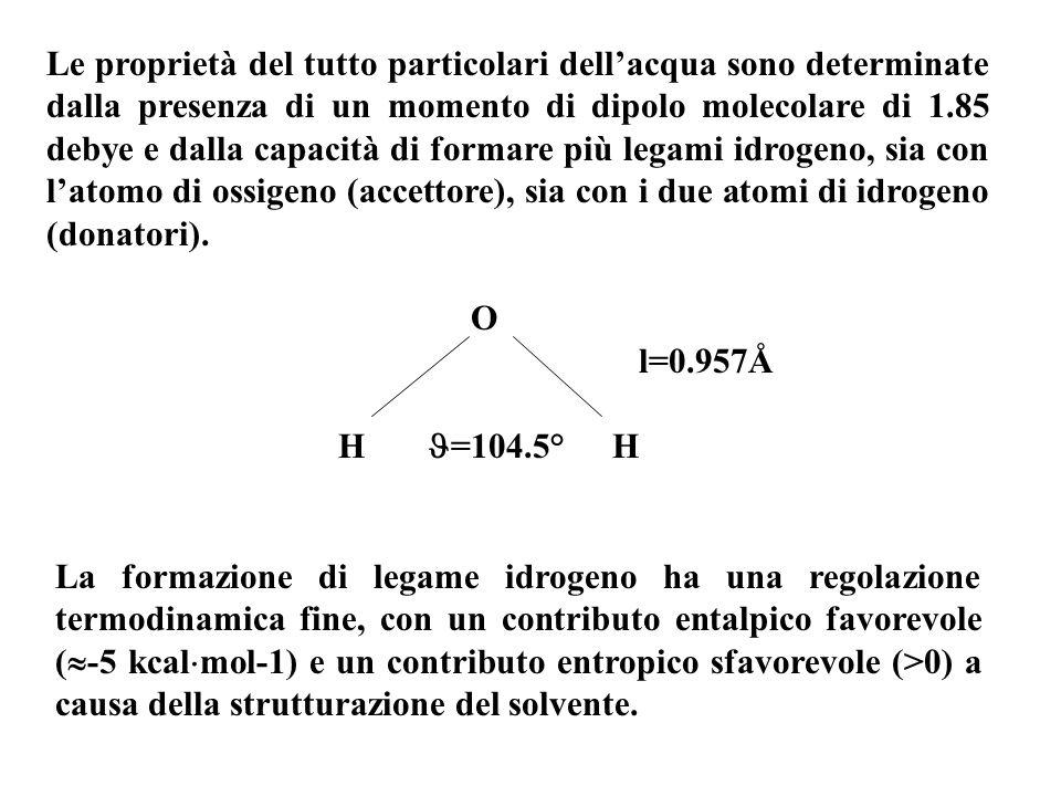 Le proprietà del tutto particolari dellacqua sono determinate dalla presenza di un momento di dipolo molecolare di 1.85 debye e dalla capacità di formare più legami idrogeno, sia con latomo di ossigeno (accettore), sia con i due atomi di idrogeno (donatori).