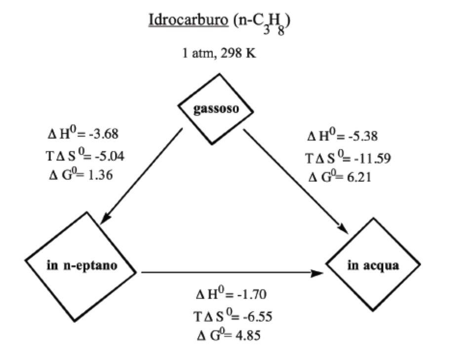 Consideriamo ora la solubilizzazione in acqua di molecole di CH 4 in fase gassosa secondo lequilibrio: 2CH 4 (g) [(CH 4 ) 2 ](aq) Lenergetica dei singoli passaggi è data da: a) solvatazione della singola molecola di metano in fase gassosa: CH 4 (g) CH 4 (aq) G solv,m = 6.30 kcal mol -1 b) dimerizzazione del metano in fase gassosa: 2CH 4 (g) [(CH 4 ) 2 ](g) G dim,g = 5.70 kcal mol -1 c) solvatazione del dimero di metano in fase gassosa: [(CH4) 2 ](g) [(CH 4 ) 2 ](aq) G solv,d = 6.10 kcal mol -1