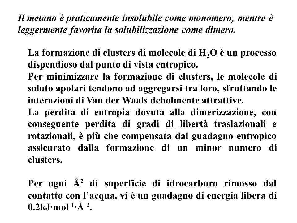 Il metano è praticamente insolubile come monomero, mentre è leggermente favorita la solubilizzazione come dimero. La formazione di clusters di molecol