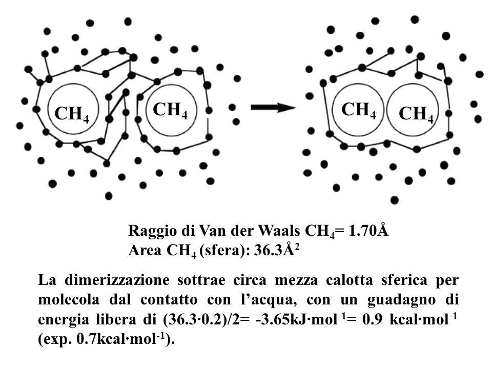 CH 4 Raggio di Van der Waals CH 4 = 1.70Å Area CH 4 (sfera): 36.3Å 2 La dimerizzazione sottrae circa mezza calotta sferica per molecola dal contatto con lacqua, con un guadagno di energia libera di (36.3·0.2)/2= -3.65kJ·mol -1 = 0.9 kcal·mol -1 (exp.