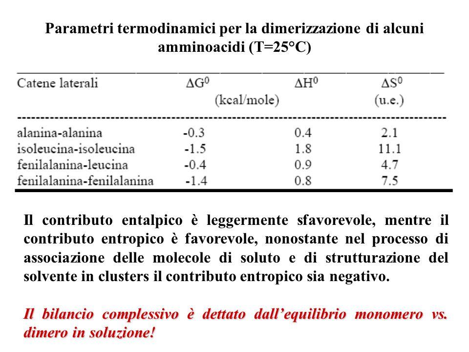 Parametri termodinamici per la dimerizzazione di alcuni amminoacidi (T=25°C) Il contributo entalpico è leggermente sfavorevole, mentre il contributo entropico è favorevole, nonostante nel processo di associazione delle molecole di soluto e di strutturazione del solvente in clusters il contributo entropico sia negativo.