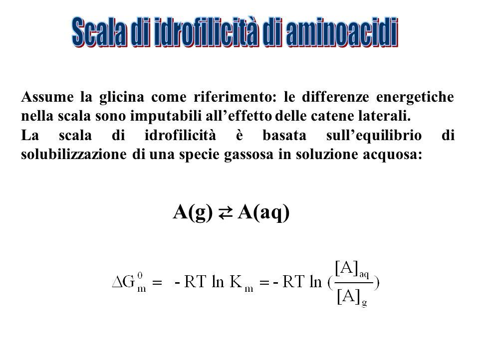 Assume la glicina come riferimento: le differenze energetiche nella scala sono imputabili alleffetto delle catene laterali. La scala di idrofilicità è