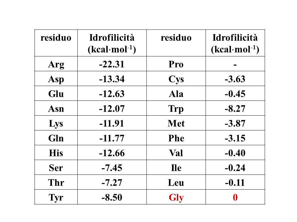 residuoIdrofilicità (kcal mol -1 ) residuoIdrofilicità (kcal mol -1 ) Arg-22.31Pro- Asp-13.34Cys-3.63 Glu-12.63Ala-0.45 Asn-12.07Trp-8.27 Lys-11.91Met-3.87 Gln-11.77Phe-3.15 His-12.66Val-0.40 Ser-7.45Ile-0.24 Thr-7.27Leu-0.11 Tyr-8.50Gly0