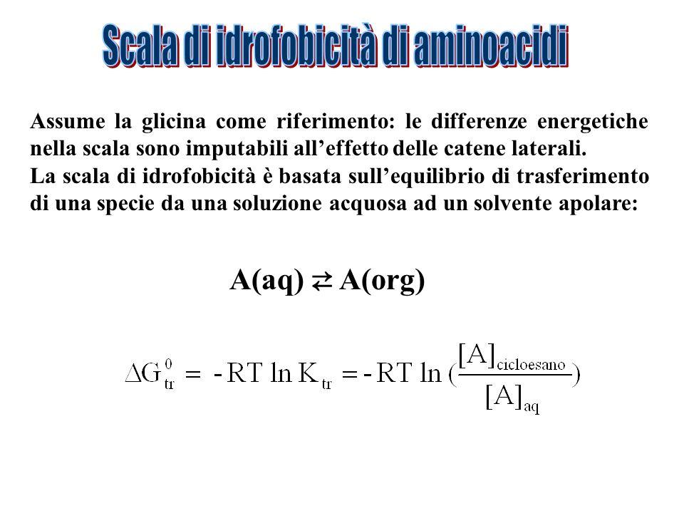 Assume la glicina come riferimento: le differenze energetiche nella scala sono imputabili alleffetto delle catene laterali. La scala di idrofobicità è