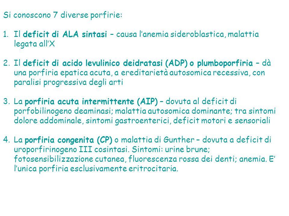 Si conoscono 7 diverse porfirie: 1.Il deficit di ALA sintasi – causa lanemia sideroblastica, malattia legata allX 2.Il deficit di acido levulinico deidratasi (ADP) o plumboporfiria – dà una porfiria epatica acuta, a ereditarietà autosomica recessiva, con paralisi progressiva degli arti 3.La porfiria acuta intermittente (AIP) – dovuta al deficit di porfobilinogeno deaminasi; malattia autosomica dominante; tra sintomi dolore addominale, sintomi gastroenterici, deficit motori e sensoriali 4.La porfiria congenita (CP) o malattia di Gunther – dovuta a deficit di uroporfirinogeno III cosintasi.