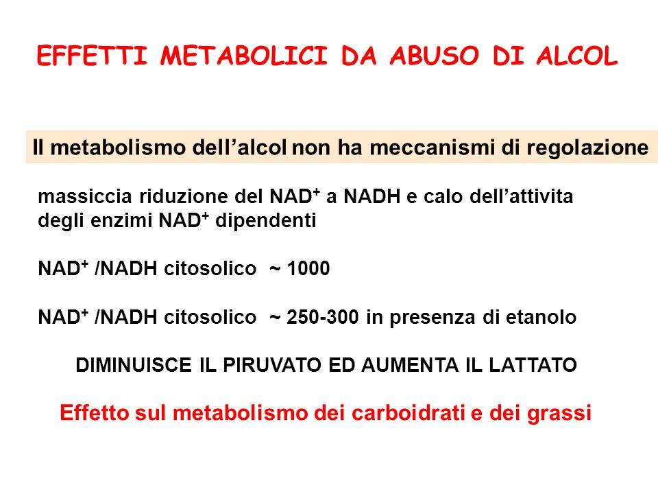 massiccia riduzione del NAD + a NADH e calo dellattivita degli enzimi NAD + dipendenti NAD + /NADH citosolico ~ 1000 NAD + /NADH citosolico ~ 250-300