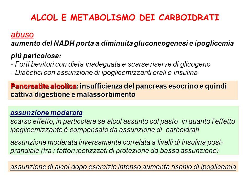 ALCOL E METABOLISMO DEI CARBOIDRATIabuso aumento del NADH porta a diminuita gluconeogenesi e ipoglicemia più pericolosa: - Forti bevitori con dieta in
